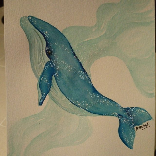 Blue whale in watercolor by Morgan Jt